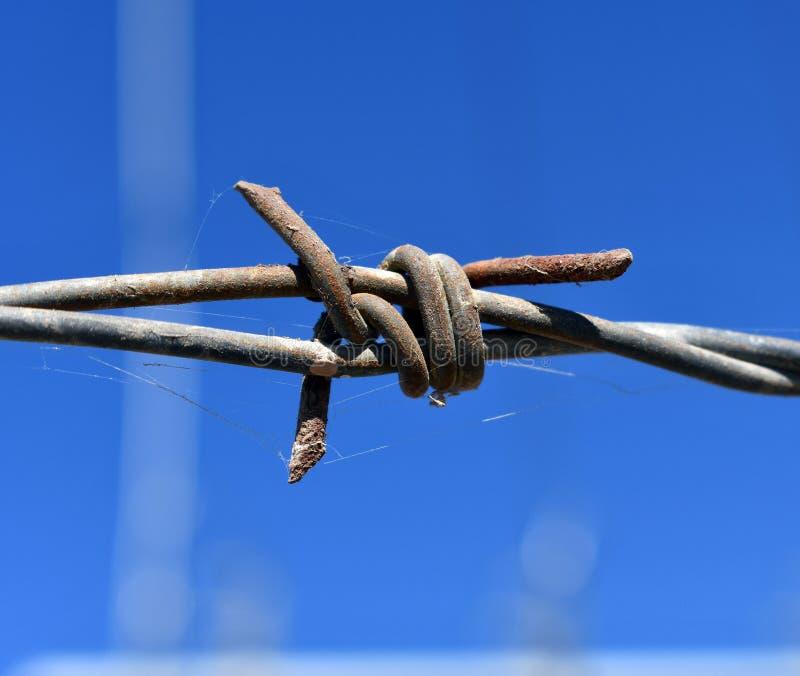 Stary ośniedziały drut kolczasty, zakończenie w górę Elektryfikujący ogrodzenie z drutem kolczastym fotografia royalty free