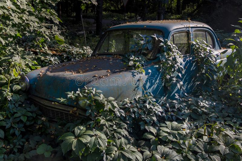 Stary ośniedziały przerastający zaniechany sowiecki retro samochód Zielony poczta apocalypse pojęcie obrazy royalty free