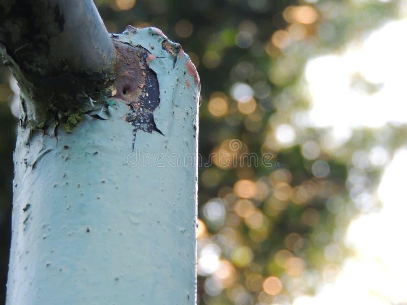 Stary Ośniedziały słup w ogródzie obrazy stock