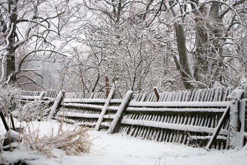 Stary ogród zimą zdjęcie royalty free