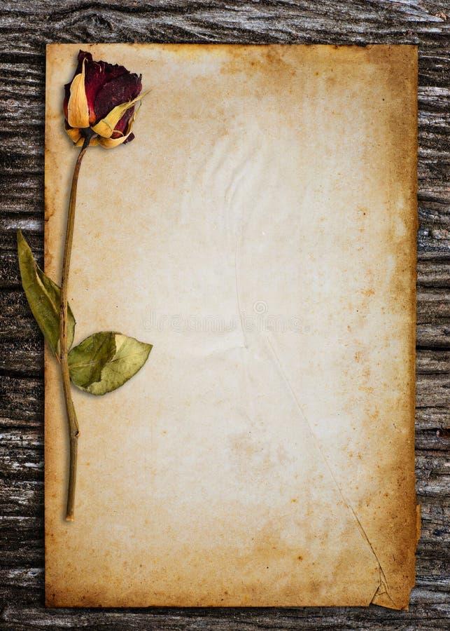 Stary papier dla słowa. zdjęcia royalty free