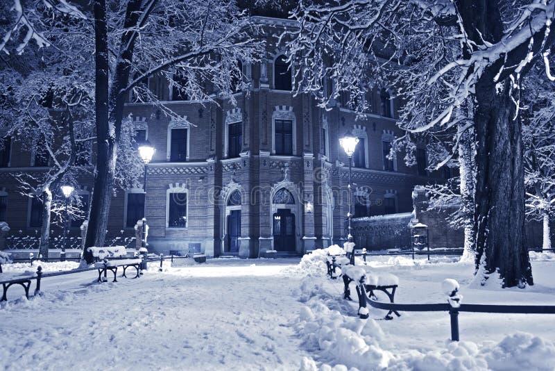 Stary park w zimie zdjęcia stock