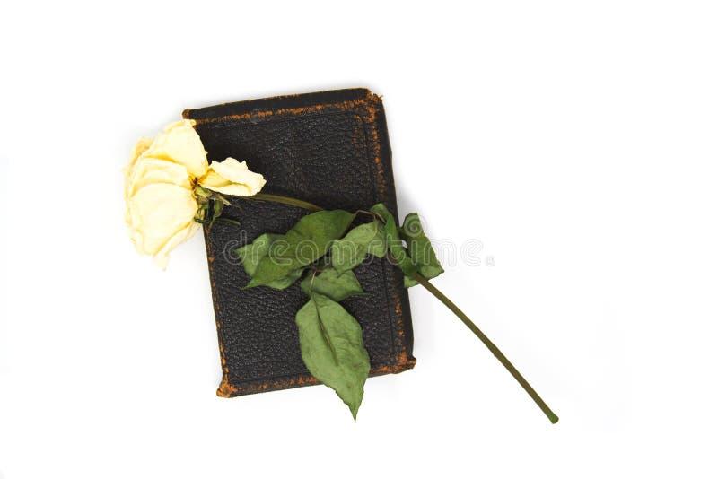 Stary Różany i biblia zdjęcia royalty free