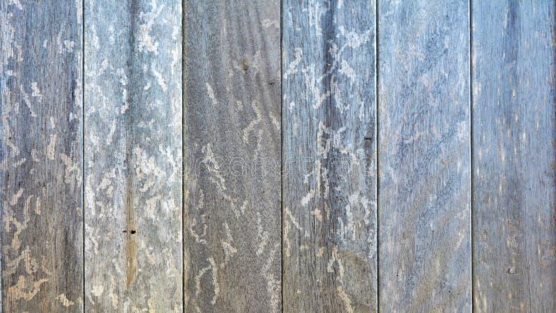 Stary rocznika drewno kasetonuje tło zdjęcia royalty free