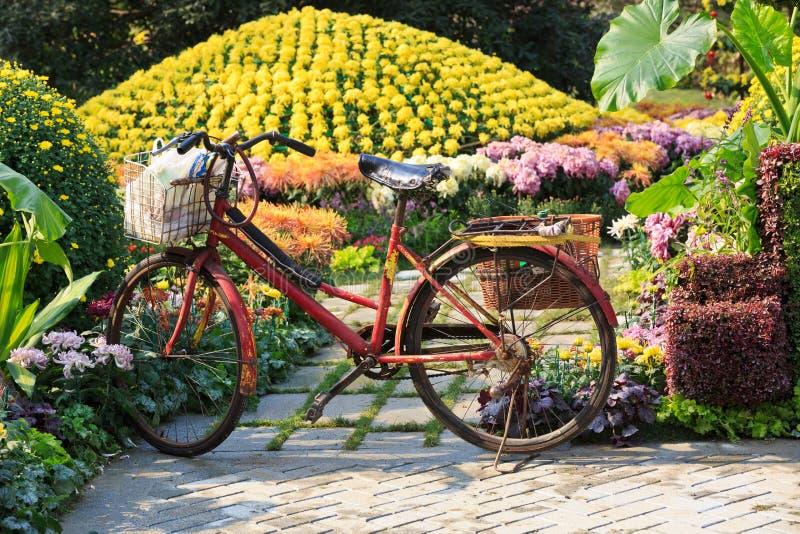 Stary rower w ogródzie fotografia stock