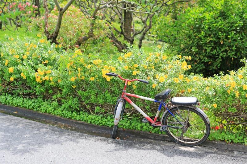 Stary rower w ulicznym strona parka ogródzie obrazy royalty free