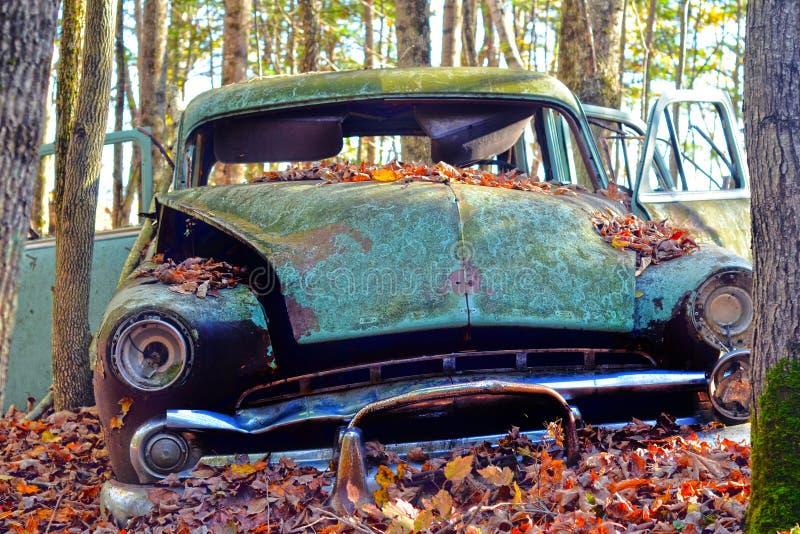 Stary samochód w lesie fotografia stock