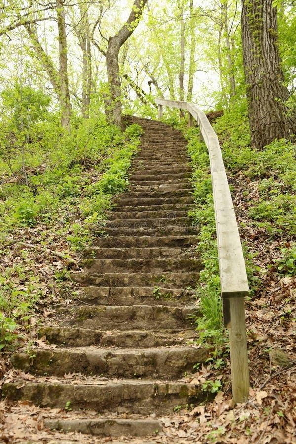 Stary schody w parku fotografia stock