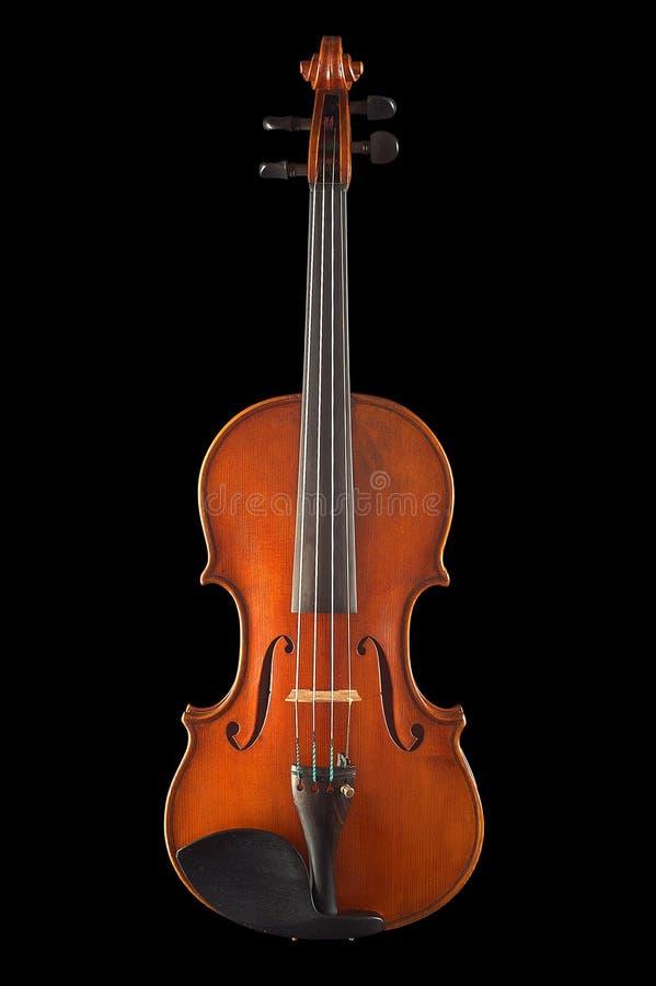 stary skrzypce. zdjęcie royalty free