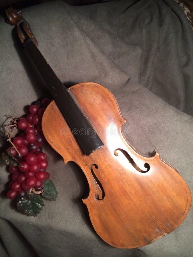stary skrzypce fotografia royalty free
