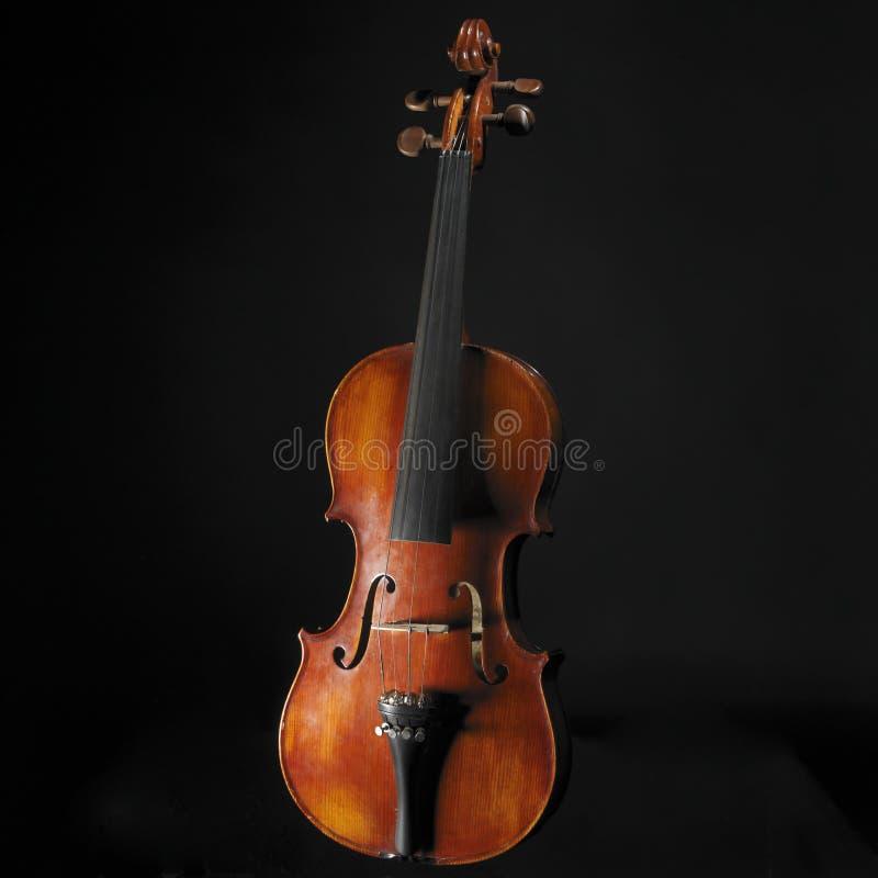 stary skrzypce. zdjęcie stock