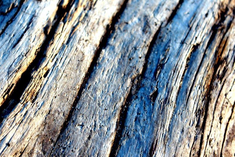 stary tła drewna obrazy royalty free
