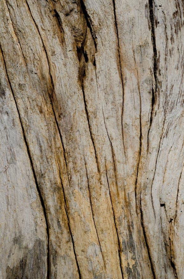 stary tła drewno zdjęcia royalty free