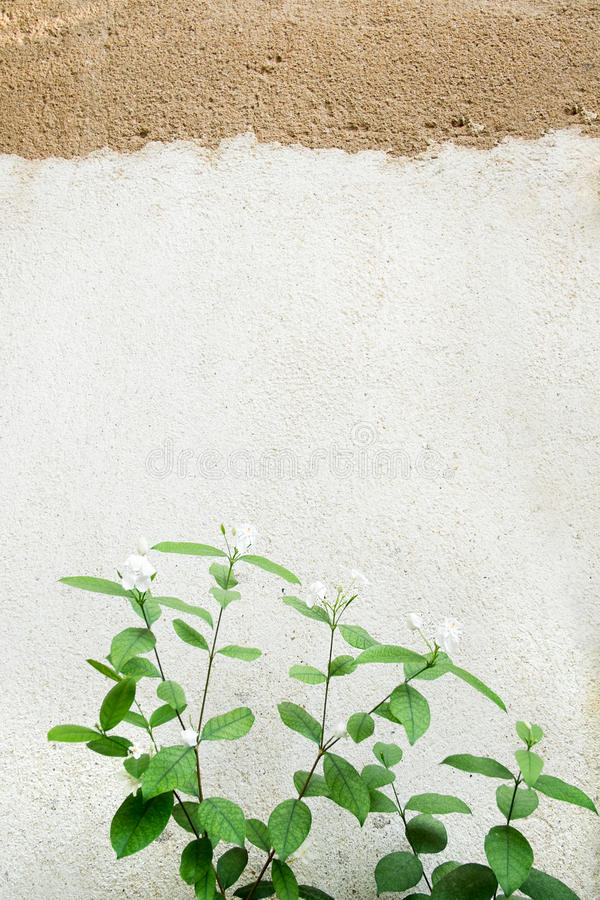 Stary tekstury ściana z cegieł, tło zdjęcia stock