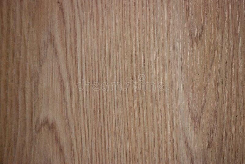 stary tekstury drewna tło obraz royalty free