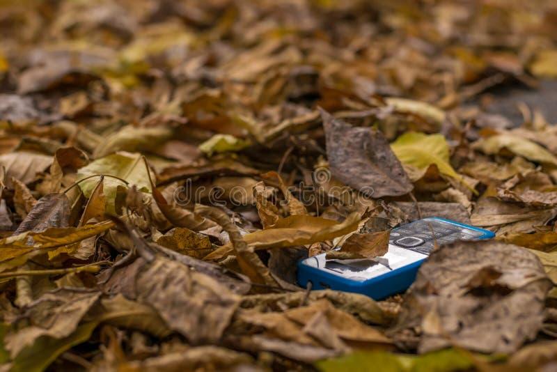 Stary telefon komórkowy z guzikami kłama na jesieni ulistnieniu fotografia stock