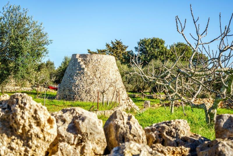 Stary trulli i pola storeroom w Puglia, Włochy obraz royalty free