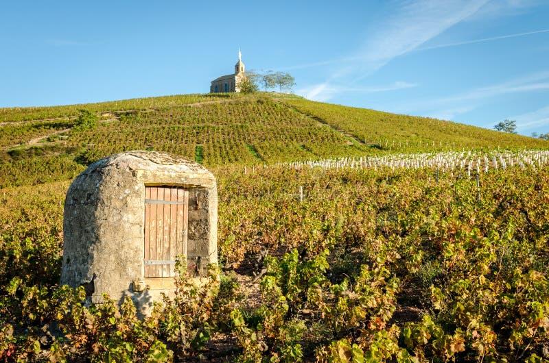 Stary well i kaplica w francuskim winnicy zdjęcia stock