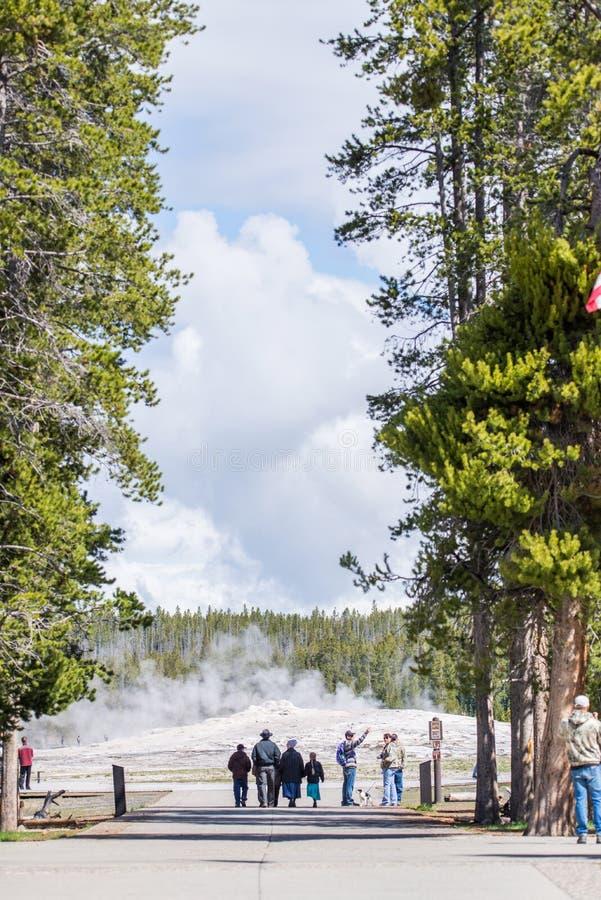Stary Wierny gejzer - Yellowstone Krajowy park Yellowstone Nat zdjęcie stock