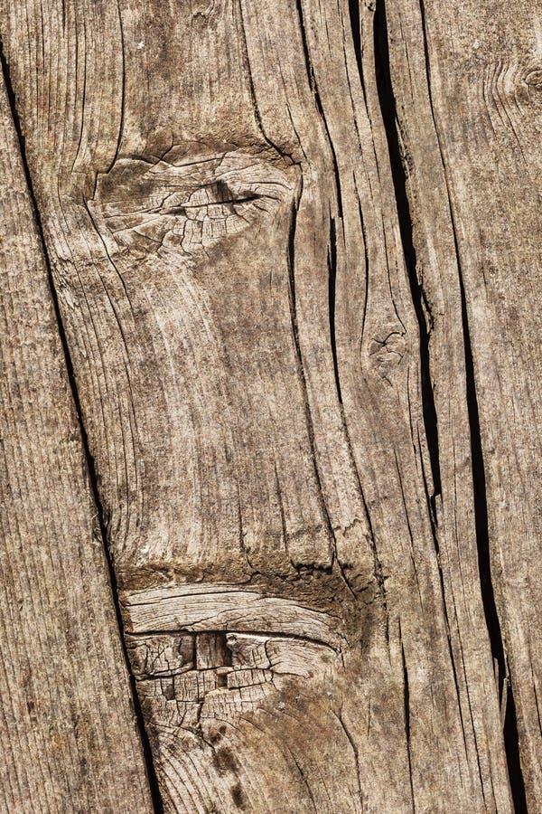 Stary Wietrzejący Krakingowy Supłający Sosnowego drewna Floorboard Grunge tekstury szczegół zdjęcie stock