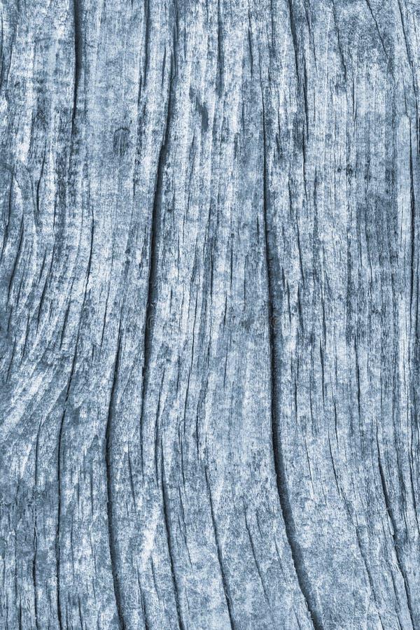 Stary Wietrzejący Powyginany Krakingowy Drewniany Szorstki Prochowego błękita Grunge tekstury szczegół zdjęcia royalty free