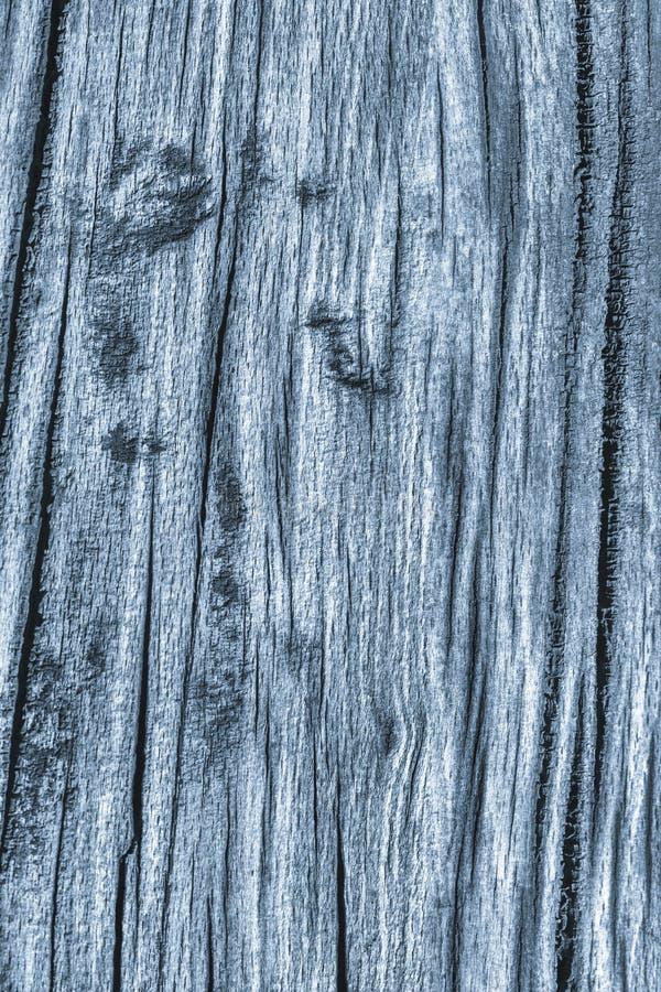 Stary Wietrzejący Powyginany Krakingowy Drewniany Szorstki Prochowego błękita Grunge tekstury szczegół zdjęcie royalty free