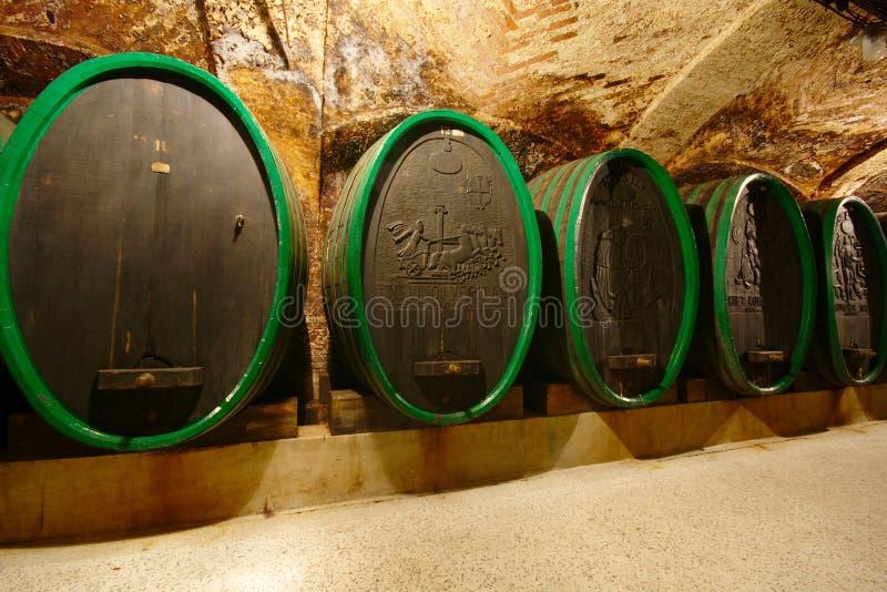 Stary wino loch, Ptuj, Slovenia obrazy royalty free