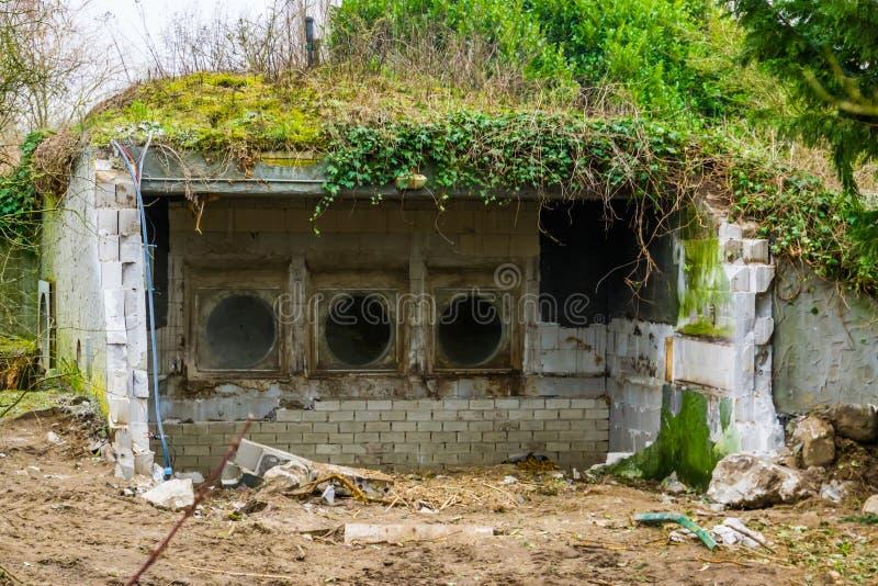 Stary wyburzający budynek z dachem zakrywającym w trawie i roślinach obrazy royalty free