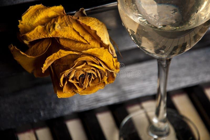 Stary wzrastał za wina szkłem na pianinie obrazy royalty free