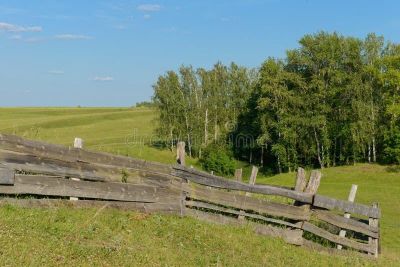 Stary załamuje się drewniany ogrodzenie na zielonej haliźnie obraz royalty free