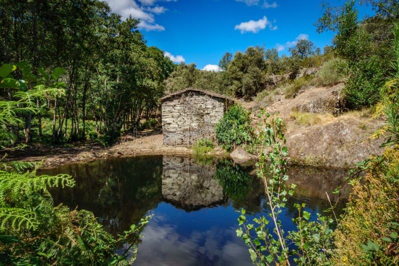Stary zaniechany watermill i staw fotografia stock