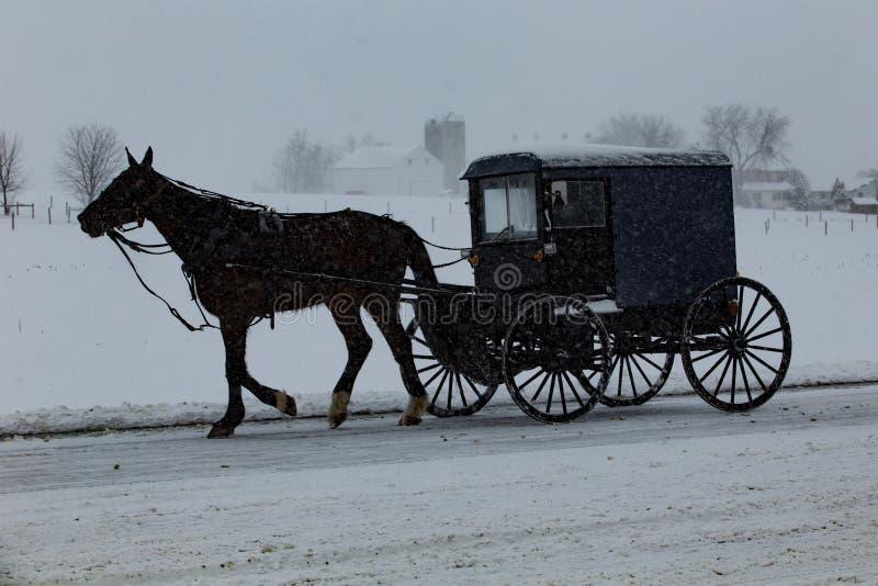 Starych Porządków Amish powozik Podróżuje Przez śniegu obraz royalty free