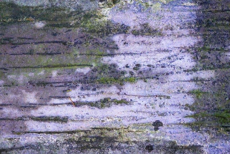 Starzejący się retro szarawy wiith zieleni mech tafluje textured tło obrazy stock