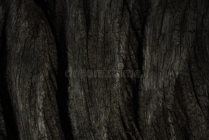 Starzejąca się Wietrzejąca Drewniana fiszorek powierzchni tekstura obraz royalty free