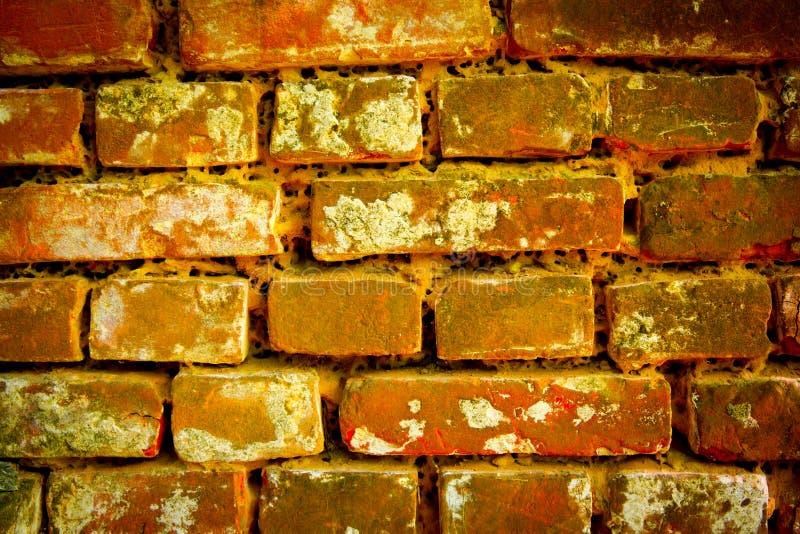 Starzy briks w ścianie zdjęcie royalty free