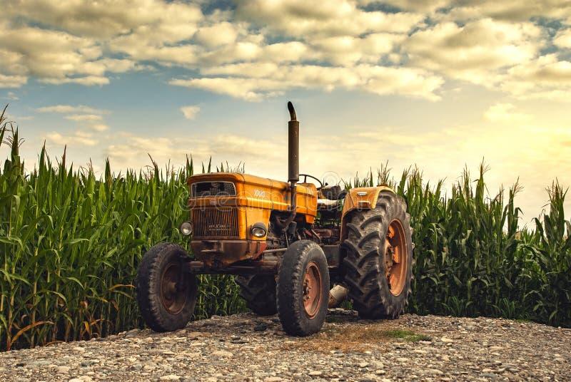 Starzy ciągnikowi pobliscy rolni pola fotografia royalty free