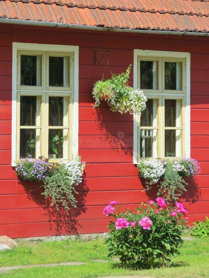 Starzy domowi okno i kwiaty obraz royalty free
