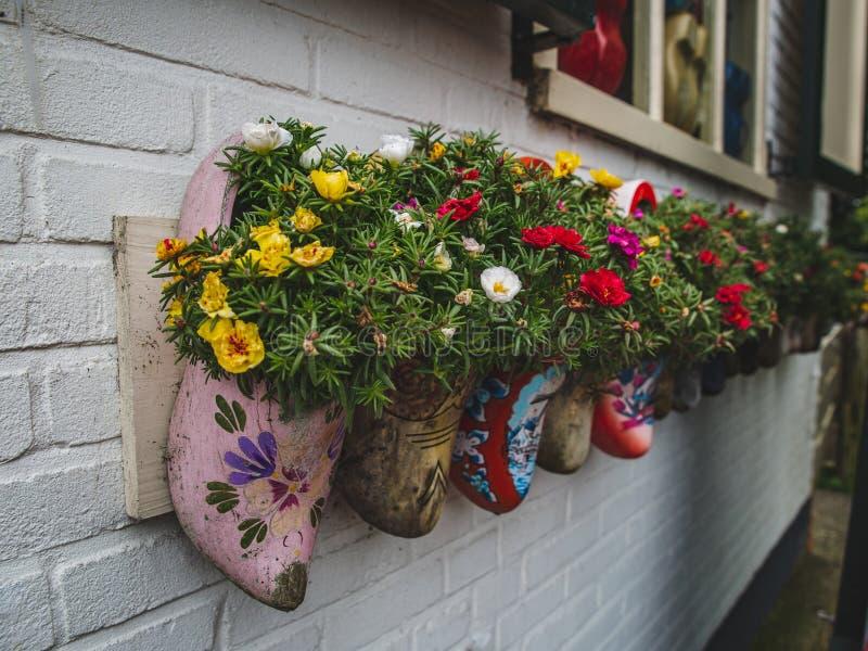 Starzy drewniani chodaki z kwitnieniem kwitną w populaci wiosce zdjęcia stock