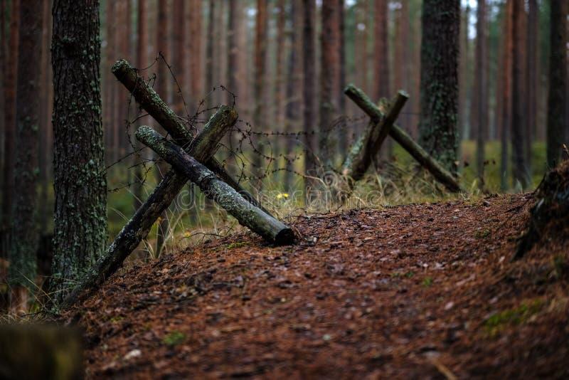 starzy drewniani trenshes w Latvia odbudowa pierwszy wojna światowa fotografia stock