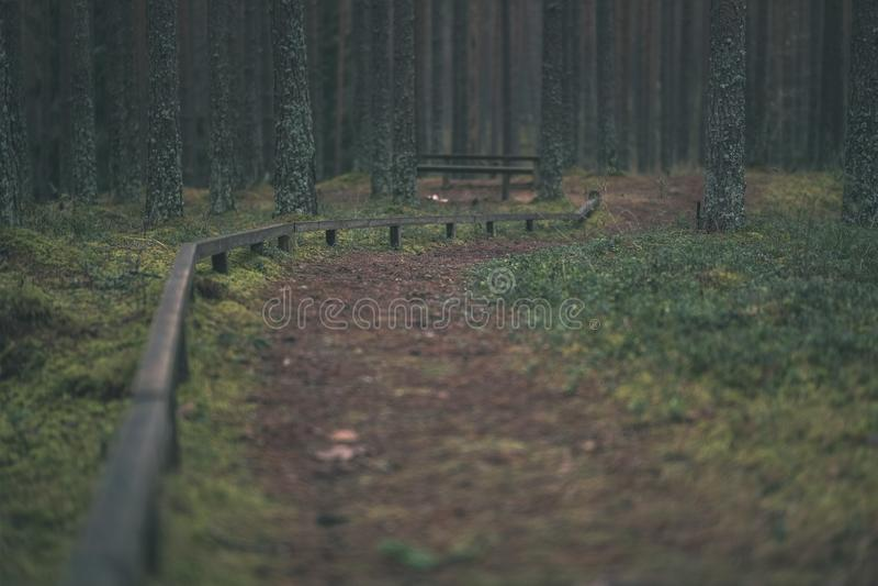 starzy drewniani trenshes w Latvia odbudowa pierwszy wojna światowa fotografia royalty free
