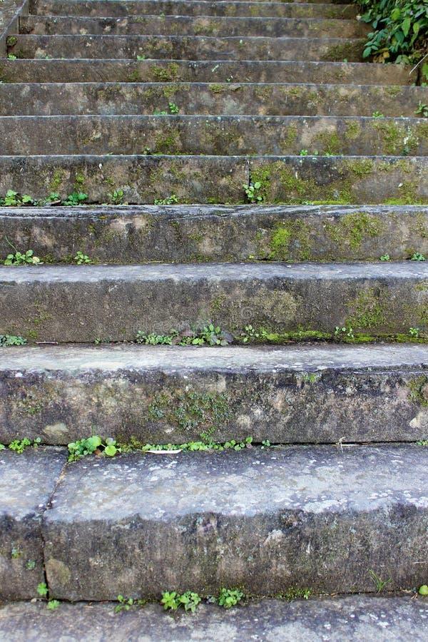 Starzy kamieni kroki na zboczu w Japonia obraz royalty free
