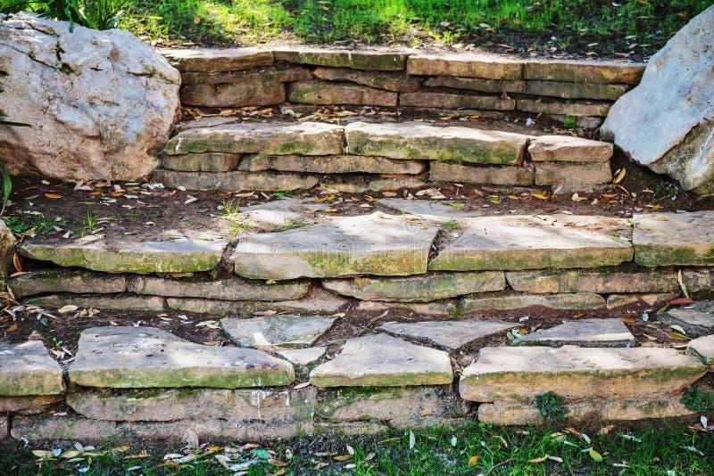 Starzy kamieni kroki przerastający obraz royalty free