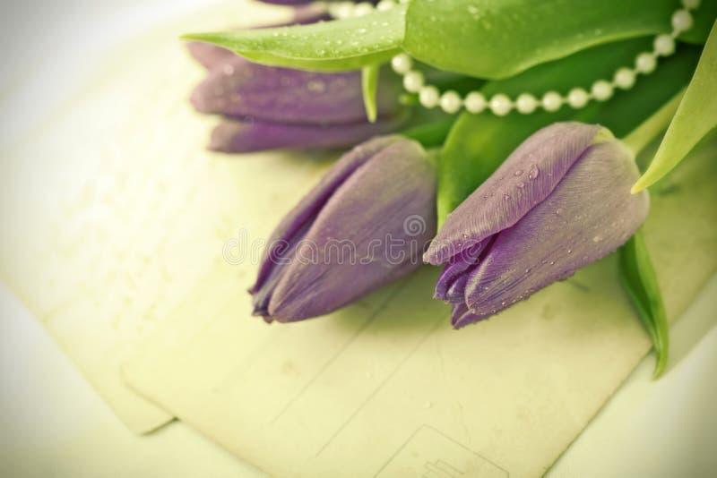 Starzy listy miłośni i purpurowi tulipany zdjęcia royalty free