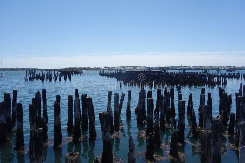 Starzy palowania w Casco zatoce, Portland, Maine obrazy stock