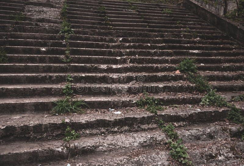 Starzy schodki w parku z rujnujący, rozdrobnić i zakrywaliśmy kroki Ponuractwo, mistyczny tonowanie obraz royalty free