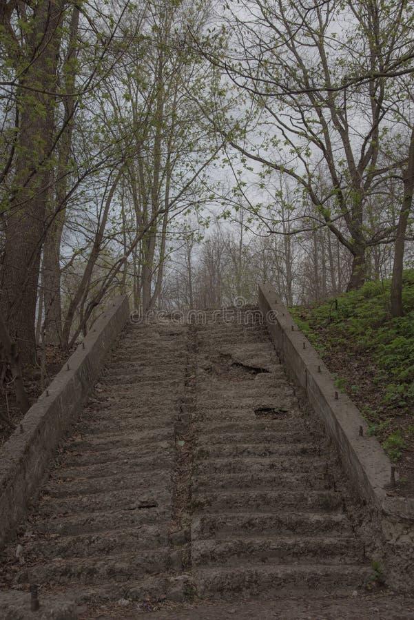 Starzy schodki w parku z rujnujący, rozdrobnić i zakrywaliśmy kroki Ponuractwo, mistyczny tonowanie Pojęcie zniszczenie fotografia stock