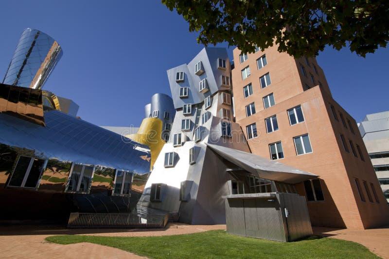 Stata-Gebäude, MIT stockfotos
