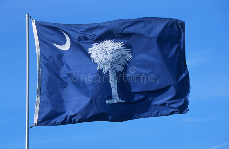 State Flag of South Carolina stock images