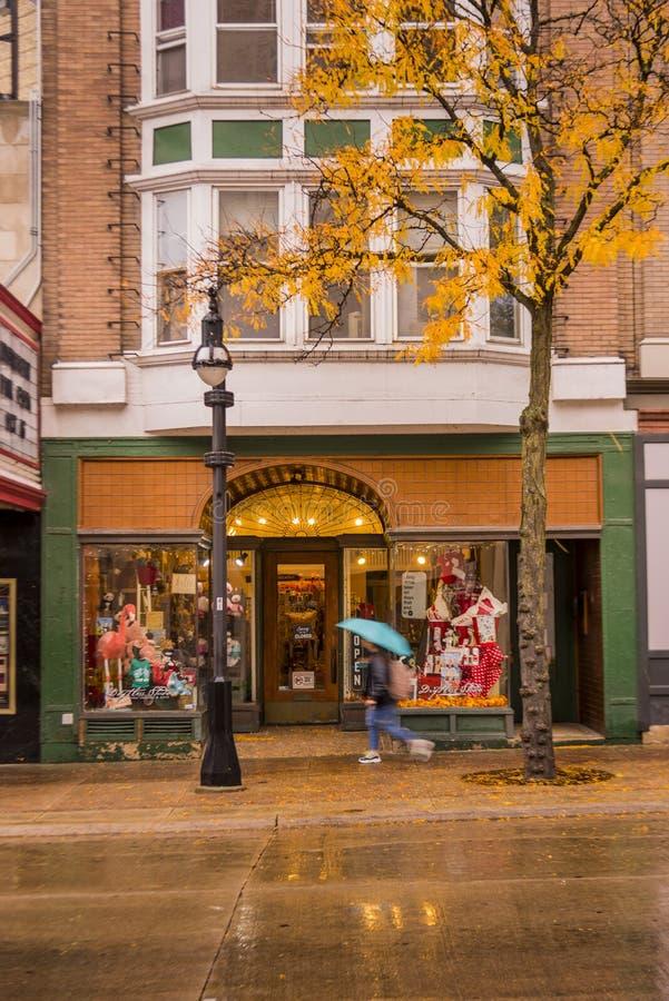 State Street i Madison, Wisconsin royaltyfri bild
