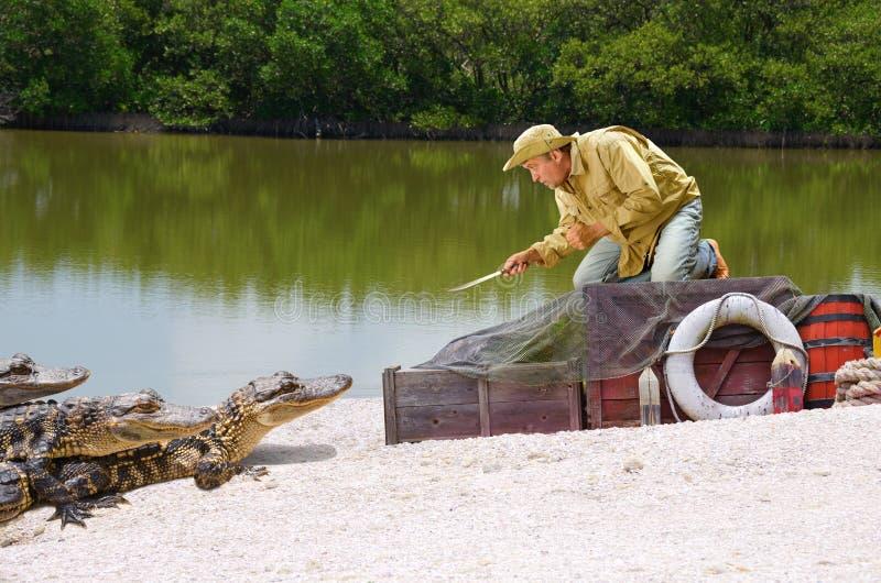 Statek rujnujący castaway bagna mężczyzna aligatora atak fotografia royalty free